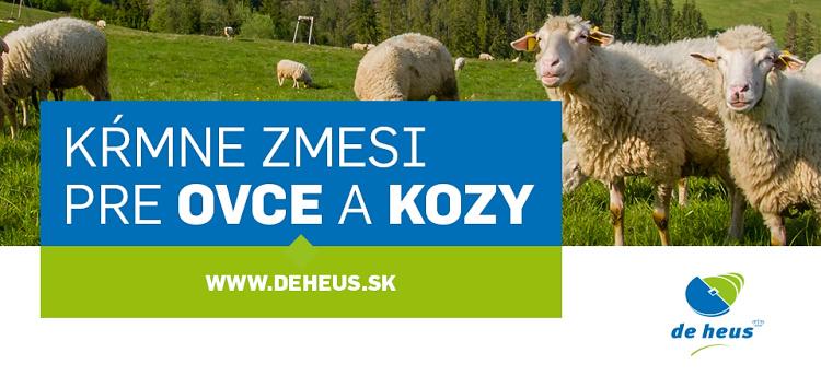 banner-zchok-deheus